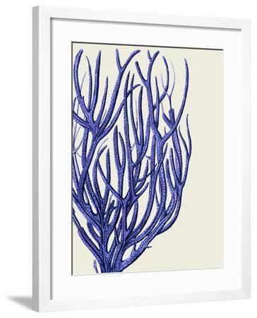 Blue Corals 2 c-Fab Funky-Framed Art Print