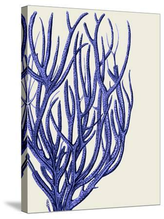 Blue Corals 2 c-Fab Funky-Stretched Canvas Print