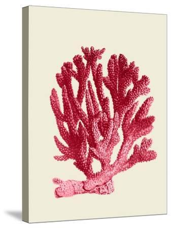 Red Corals 1 a-Fab Funky-Stretched Canvas Print