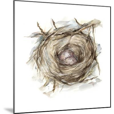 Bird Nest Study IV-Ethan Harper-Mounted Art Print