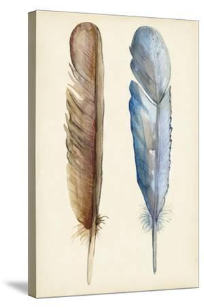 Plumage I-Alicia Ludwig-Stretched Canvas Print