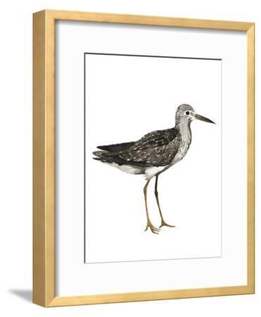 Sea Bird III-Grace Popp-Framed Art Print