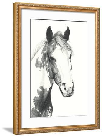 American Paint I-Grace Popp-Framed Art Print