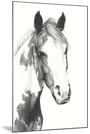 American Paint I-Grace Popp-Mounted Art Print