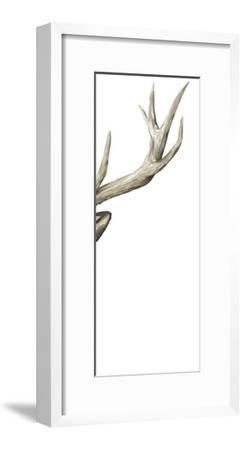 Triptych Elk III-Grace Popp-Framed Art Print