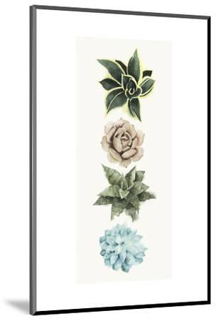 Row of Succulents I-Grace Popp-Mounted Art Print