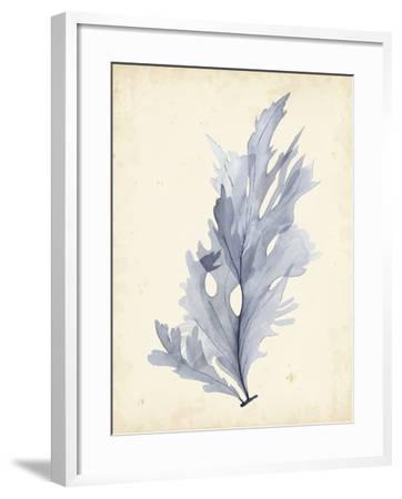 Watercolor Sea Grass VI-Grace Popp-Framed Art Print