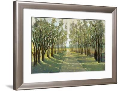 Forest Path-Tim OToole-Framed Art Print