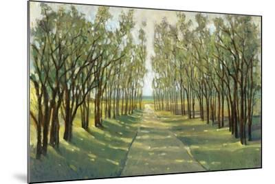 Forest Path-Tim OToole-Mounted Art Print