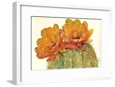 Cactus Blossoms II-Tim OToole-Framed Art Print