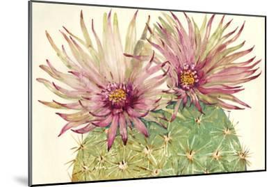 Cactus Blossoms I-Tim OToole-Mounted Art Print