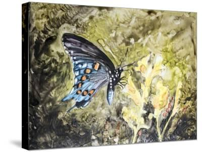 Butterfly in Nature I-B^ Lynnsy-Stretched Canvas Print