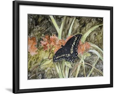 Butterfly in Nature III-B^ Lynnsy-Framed Art Print