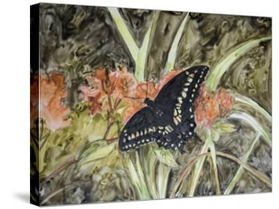 Butterfly in Nature III-B^ Lynnsy-Stretched Canvas Print