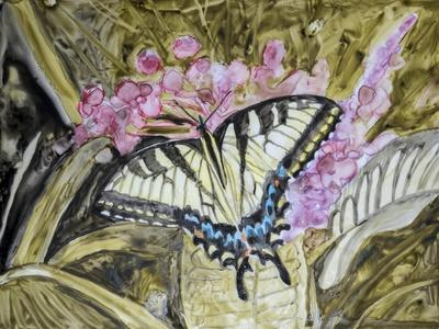Butterfly in Nature II-B^ Lynnsy-Framed Art Print