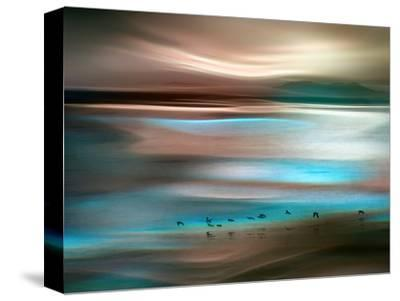 Migrations-Ursula Abresch-Stretched Canvas Print
