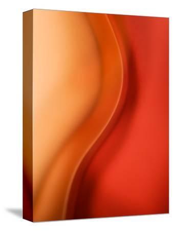 Solo-Ursula Abresch-Stretched Canvas Print