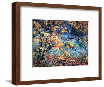 Yellow Heart-Ursula Abresch-Framed Photographic Print