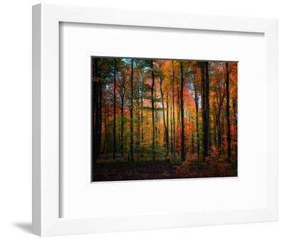 Crayons-Philippe Sainte-Laudy-Framed Photographic Print