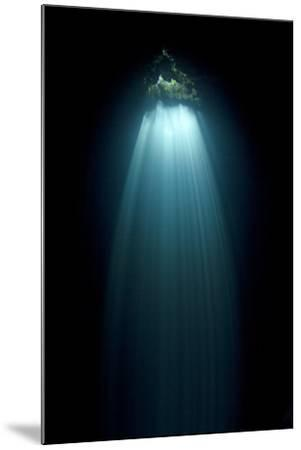 Light Entering Cenote Siete Bocas, Near Puerto Morelos, Riviera Maya, Yucatan Peninsula, Mexico-Claudio Contreras-Mounted Photographic Print