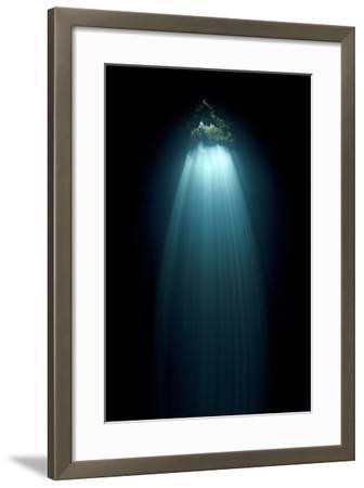 Light Entering Cenote Siete Bocas, Near Puerto Morelos, Riviera Maya, Yucatan Peninsula, Mexico-Claudio Contreras-Framed Photographic Print