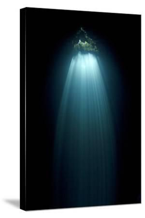 Light Entering Cenote Siete Bocas, Near Puerto Morelos, Riviera Maya, Yucatan Peninsula, Mexico-Claudio Contreras-Stretched Canvas Print