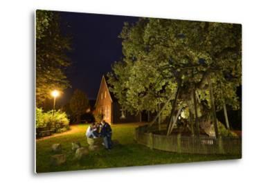 Femeiche' the Court Tree at Night-Solvin Zankl-Metal Print