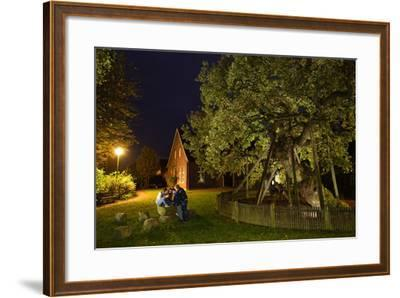 Femeiche' the Court Tree at Night-Solvin Zankl-Framed Photographic Print