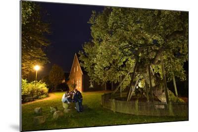 Femeiche' the Court Tree at Night-Solvin Zankl-Mounted Photographic Print