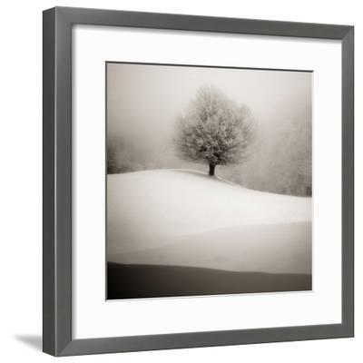 Winter Degradee-SC-Framed Photographic Print
