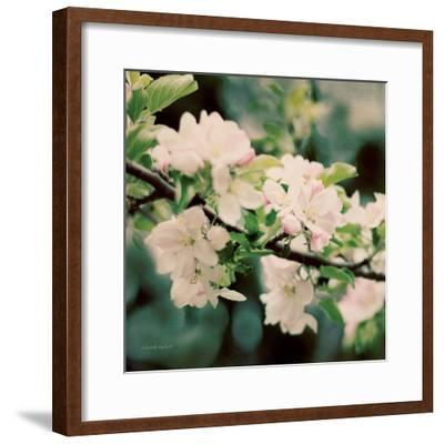Apple Blossoms I Crop-Elizabeth Urquhart-Framed Art Print