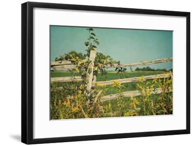 Blissful Country V Crop-Elizabeth Urquhart-Framed Art Print