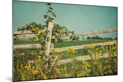 Blissful Country V Crop-Elizabeth Urquhart-Mounted Art Print
