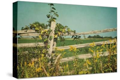 Blissful Country V Crop-Elizabeth Urquhart-Stretched Canvas Print