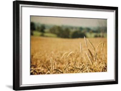 Blissful Country I Crop-Elizabeth Urquhart-Framed Art Print