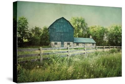 Blissful Country III Crop-Elizabeth Urquhart-Stretched Canvas Print