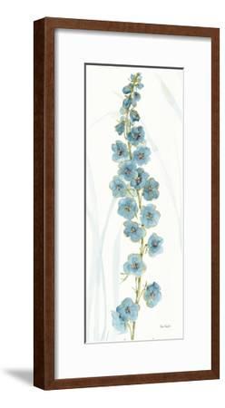 Rainbow Seeds Flowers VI-Lisa Audit-Framed Art Print