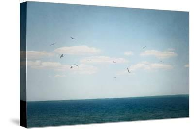 Calm Days IV Crop-Elizabeth Urquhart-Stretched Canvas Print