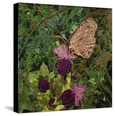Flit - Satyr Butterfly on Thistle-Kirstie Adamson-Stretched Canvas Print
