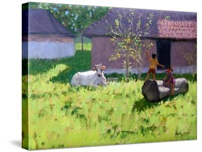 White Cow and Two Children,Mankotta Island, Kerala, India-Andrew Macara-Stretched Canvas Print