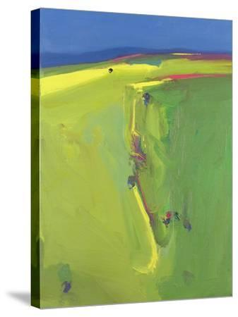 Summer Downs, 2000-John Miller-Stretched Canvas Print