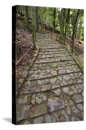 A Cobble Stone Path Leading Through the Grounds of Kasuga Taisha Shrine in Nara, Japan-Paul Dymond-Stretched Canvas Print