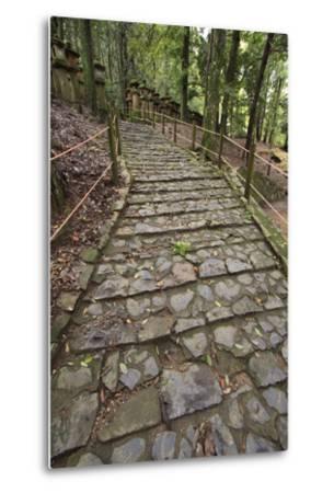 A Cobble Stone Path Leading Through the Grounds of Kasuga Taisha Shrine in Nara, Japan-Paul Dymond-Metal Print