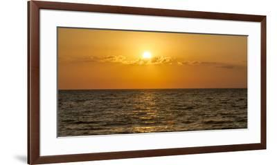 Beautiful Orange Sunset over the Gulf of Mexico from Anna Maria Island, Florida-Sheila Haddad-Framed Premium Photographic Print