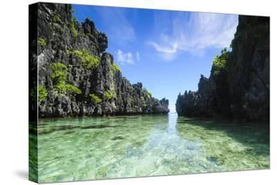 Crystal Clear Water in the Bacuit Archipelago, Palawan, Philippines-Michael Runkel-Stretched Canvas Print