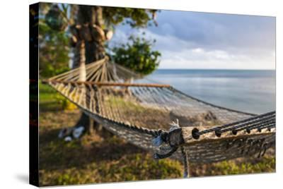Hammock on a Beach in Ha'Apai Islands, Tonga, South Pacific-Michael Runkel-Stretched Canvas Print