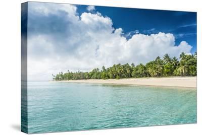 Palm Fringed White Sand Beach in Ha'Apai, Ha'Apai Islands, Tonga, South Pacific-Michael Runkel-Stretched Canvas Print