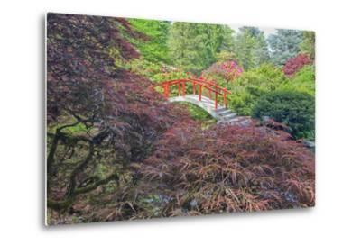 Seattle, Kubota Gardens, Spring Flowers and Japanese Maple with Moon Bridge in Reflection-Terry Eggers-Metal Print