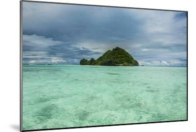 Little Island in the Rock Islands, Palau, Central Pacific-Michael Runkel-Mounted Premium Photographic Print