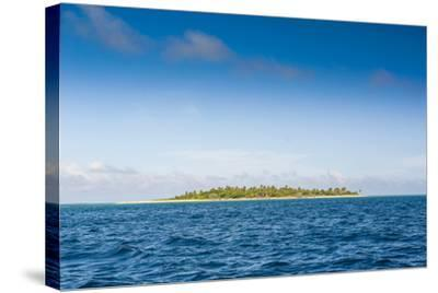 Little Island with a White Sand Beach in Ha'Apai Islands, Tonga, South Pacific-Michael Runkel-Stretched Canvas Print